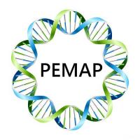 Logo REMAR